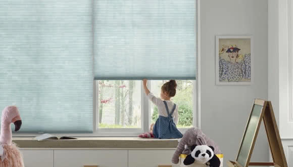 Honeycomb Cellular Shades Applause
