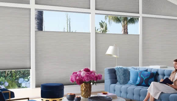 Honeycomb Cellular Shades Duette