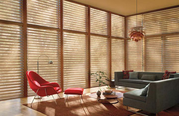 Silhouette Sheer Window Shades