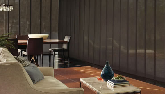 Hunter Douglas Vertical Blinds Skyline